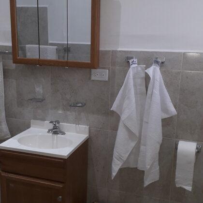 Baño, vista del lavamano y del nueble con espejo