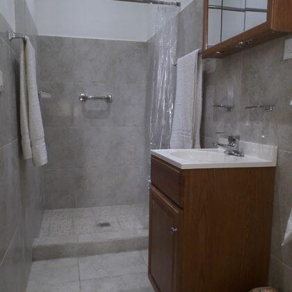 Baño, vista de la ducha