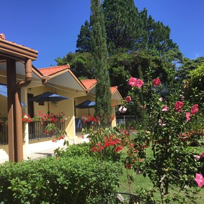 Vista del jardín